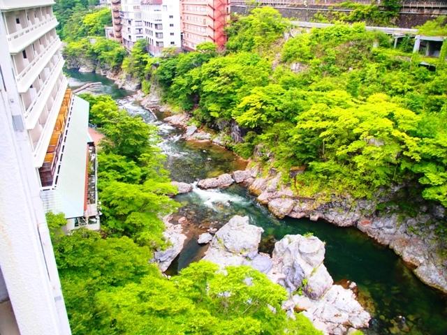東京・横浜・日光のただ旅行 ⑪_b0292900_10444970.jpg