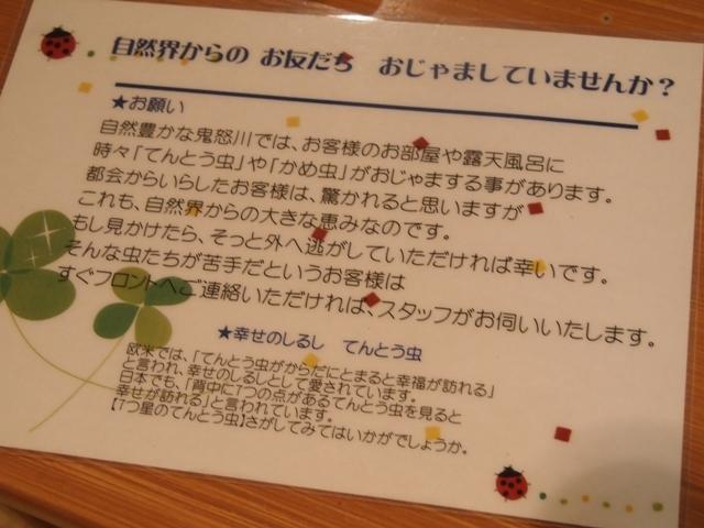 東京・横浜・日光のただ旅行 ⑪_b0292900_11280234.jpg