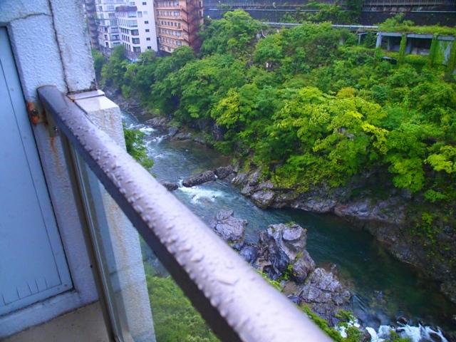東京・横浜・日光のただ旅行 ⑫_b0292900_12173087.jpg