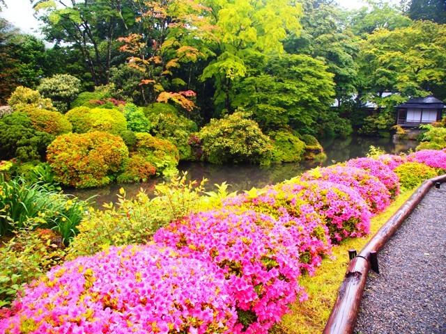 東京・横浜・日光のただ旅行 ⑫_b0292900_12483792.jpg