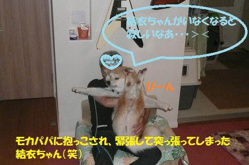 f0121712_0473830.jpg