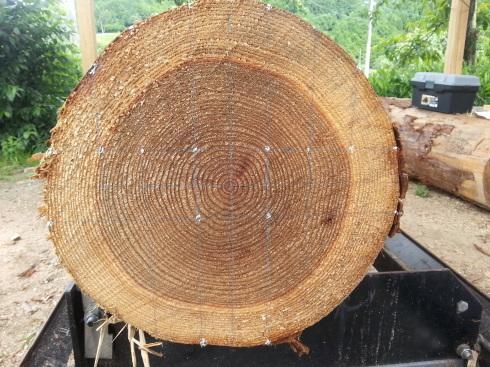 杉の製材(割ってみないと判らない事って一杯有るね。)_d0190318_18235616.jpg