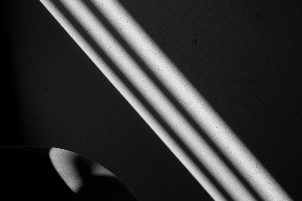 Shadow8_f0050534_00133753.jpg