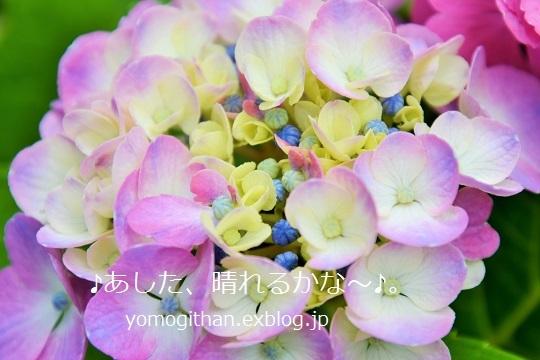 c0359535_15403218.jpg