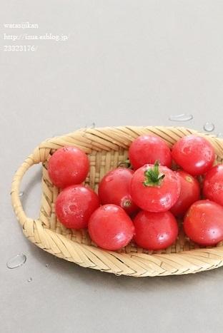 ミニトマトの収穫とブルーベリー_e0214646_22483387.jpg