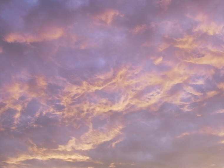 夏至から5日目の夕暮れ_b0273973_229994.jpg