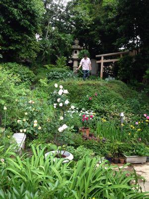 Rose Garden &  Afternoon Tea_c0195496_14431030.jpg