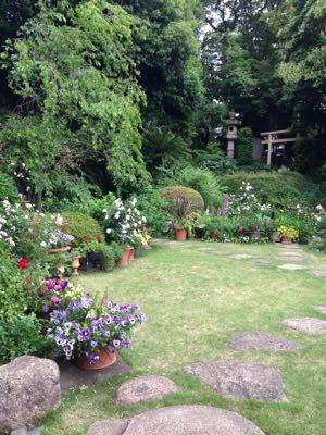 Rose Garden &  Afternoon Tea_c0195496_14431367.jpg