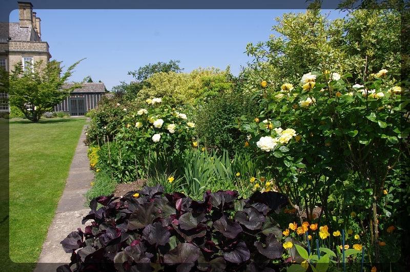 イギリス旅行記2 Bourton House Garden_e0136424_02001874.jpg