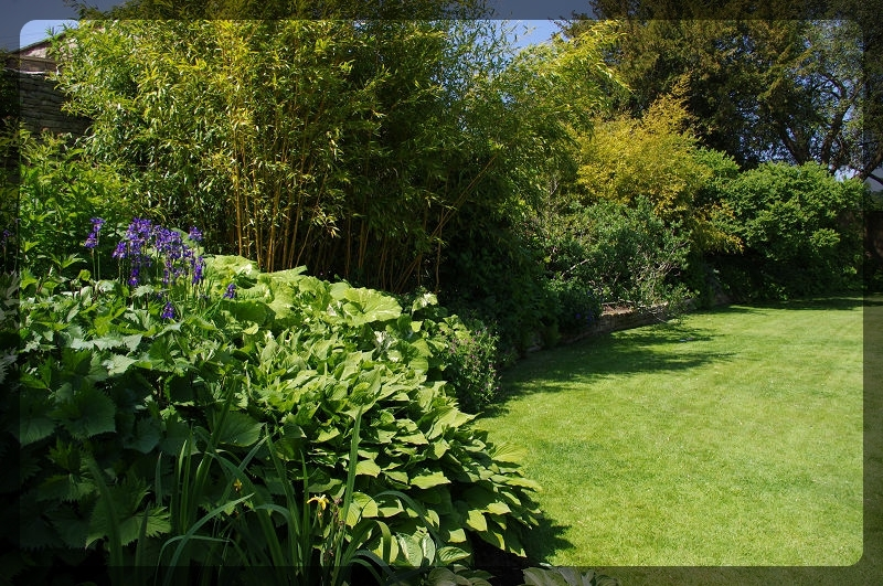 イギリス旅行記2 Bourton House Garden_e0136424_02005769.jpg