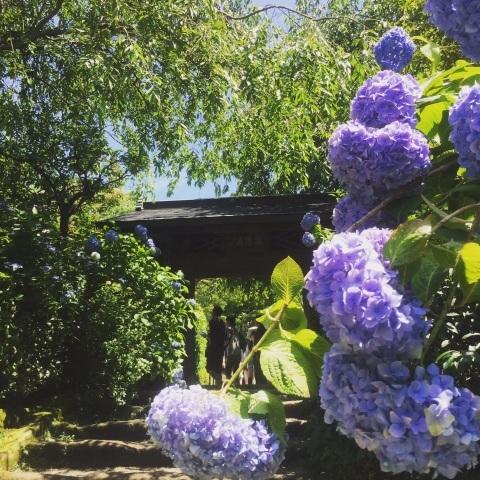 鎌倉へ_f0167026_22362223.jpg
