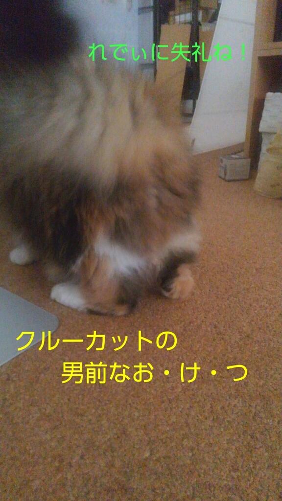 c0181639_20104160.jpg