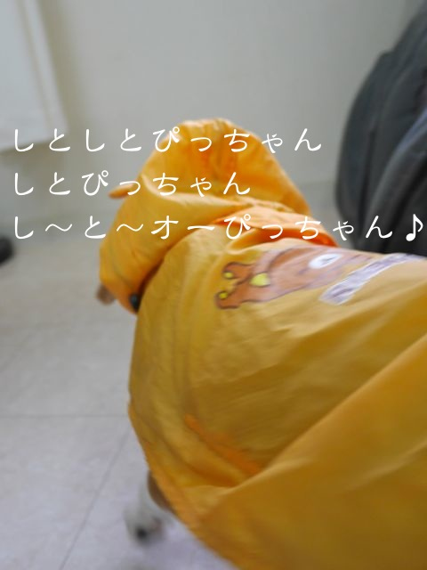 c0190940_2025205.jpg
