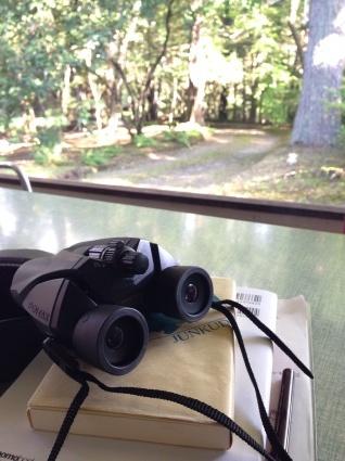 梅雨の晴れ間の軽井沢の1日_a0163160_17272418.jpg