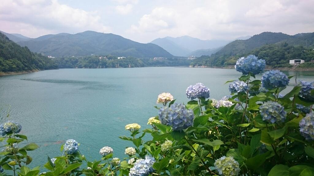 山本の7月の休みは…_b0211088_22183160.jpg