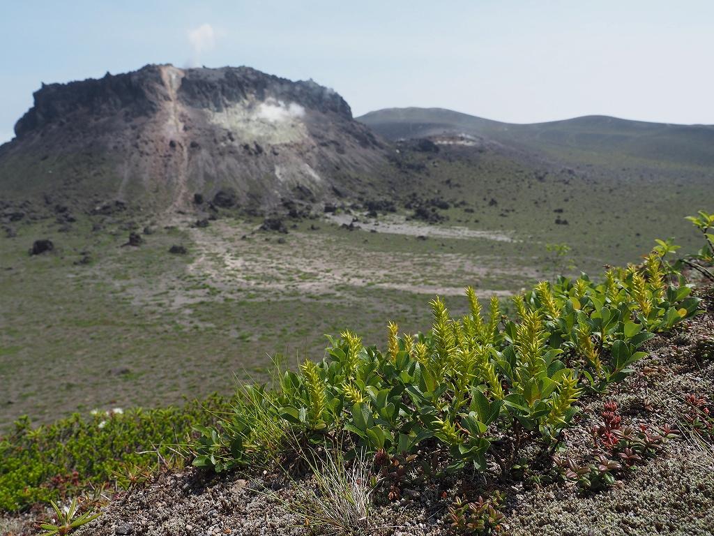 樽前山と風不死岳、6月26日_f0138096_13562926.jpg