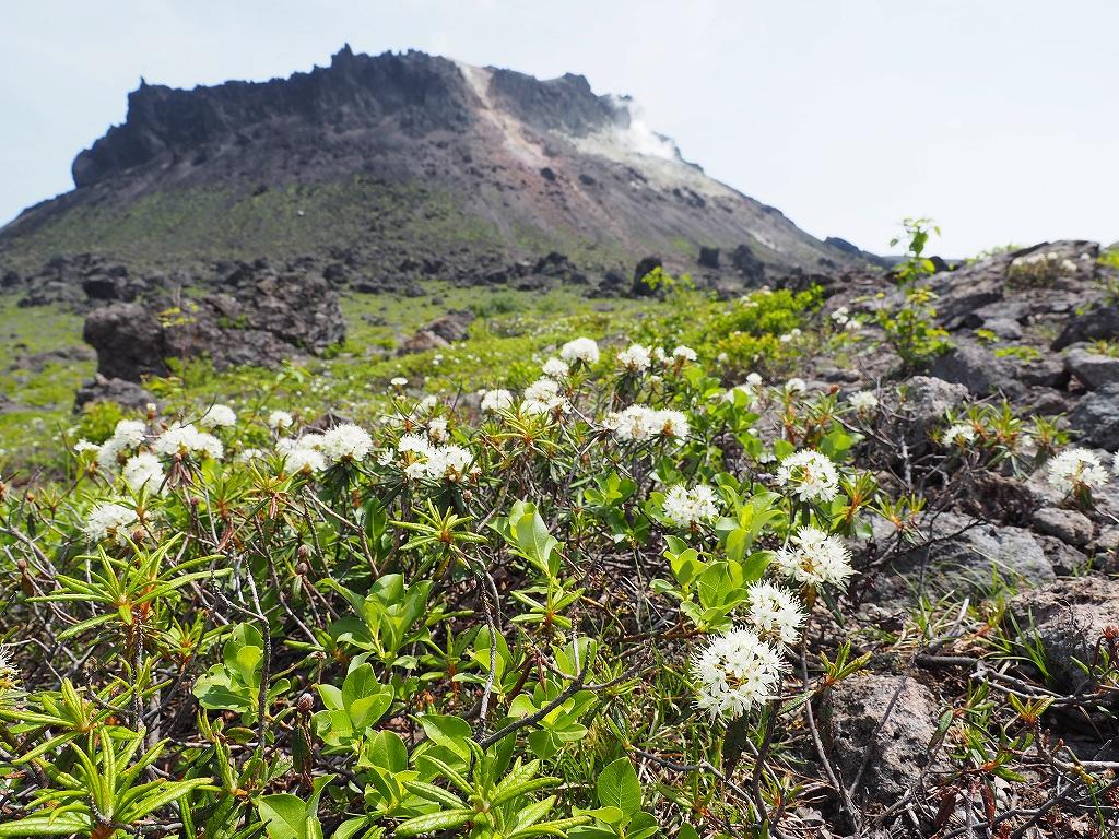 樽前山と風不死岳、6月26日_f0138096_13563671.jpg