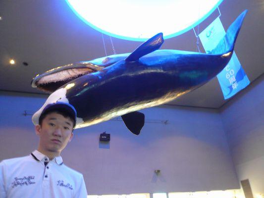 6/26 鳥羽水族館_a0154110_10192641.jpg