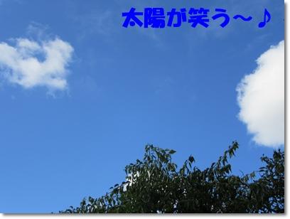 b0167519_858588.jpg
