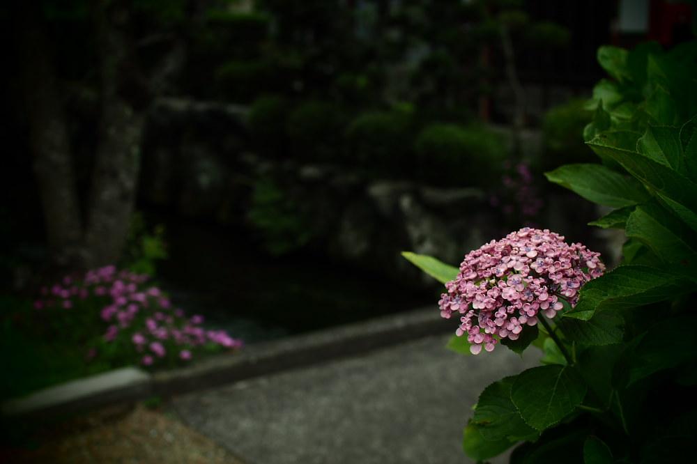醒ヶ井                 _f0021869_2247036.jpg