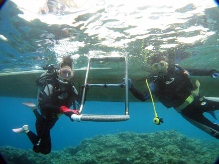 体験ダイビングとライセンス講習!!_a0156273_20381125.jpg