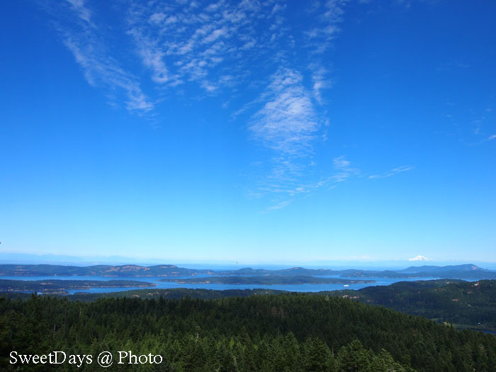 Mt. Maxwell on Saltspring Island - ソルトスプリング島_e0046675_1338459.jpg