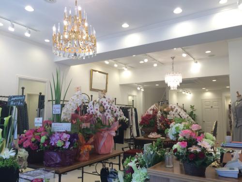 Regina Romantico 京都 北山店_f0342875_22290104.jpg