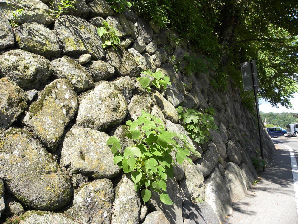 諏訪大社・春宮周辺の散歩_b0329588_18042853.jpg