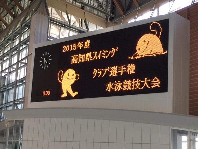 高知県スイミングクラブ選手権_b0286596_12362687.jpg