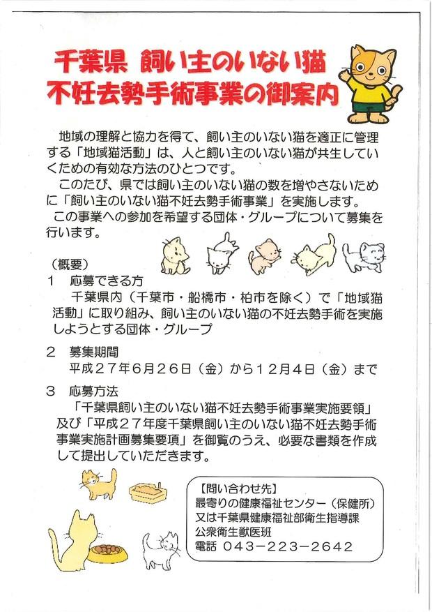 千葉県 不妊去勢手術事業のご案内_f0242002_12561157.jpg