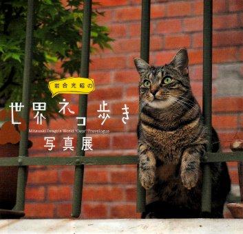 世界ネコ歩き写真展_c0051620_8154627.jpg