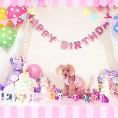 Happy Birthday☆メイシェ♪_b0014124_1113326.jpg