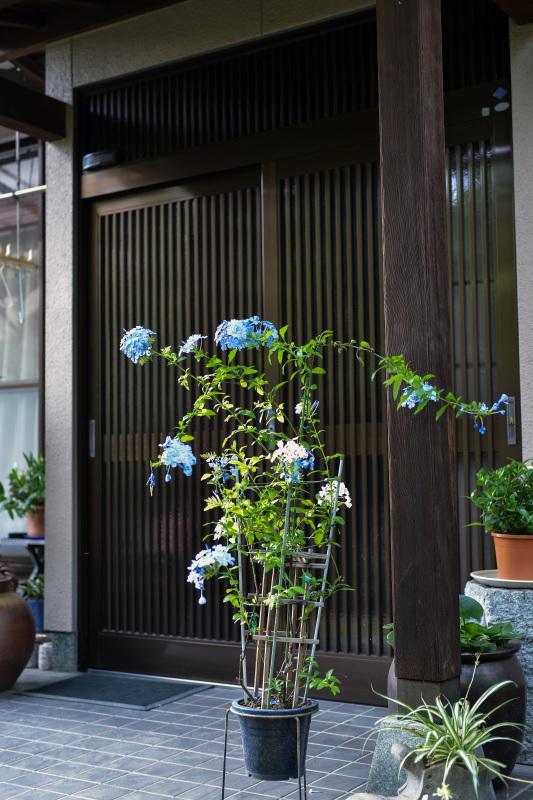 高松街ブラ  高松町界隈_d0246136_23560543.jpg