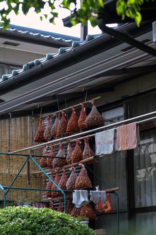 高松街ブラ  高松町界隈_d0246136_23572992.jpg