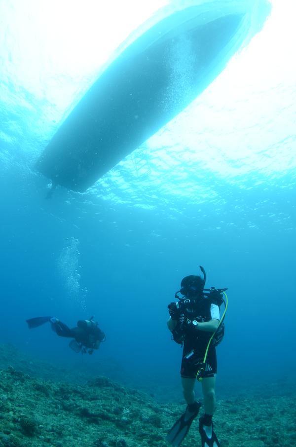 沖縄DIVE!ジンベイ&ピカチュウドリームホール_a0226058_17225676.jpg