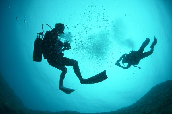 沖縄DIVE!ジンベイ&ピカチュウドリームホール_a0226058_17414971.jpg