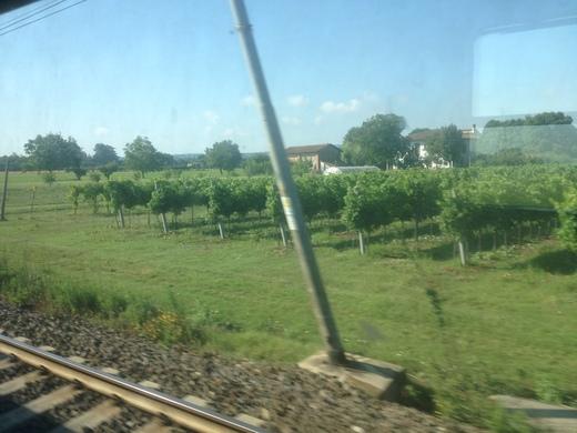 イタリアの車窓から フィレンツェ―リミニ間_a0136671_514981.jpg
