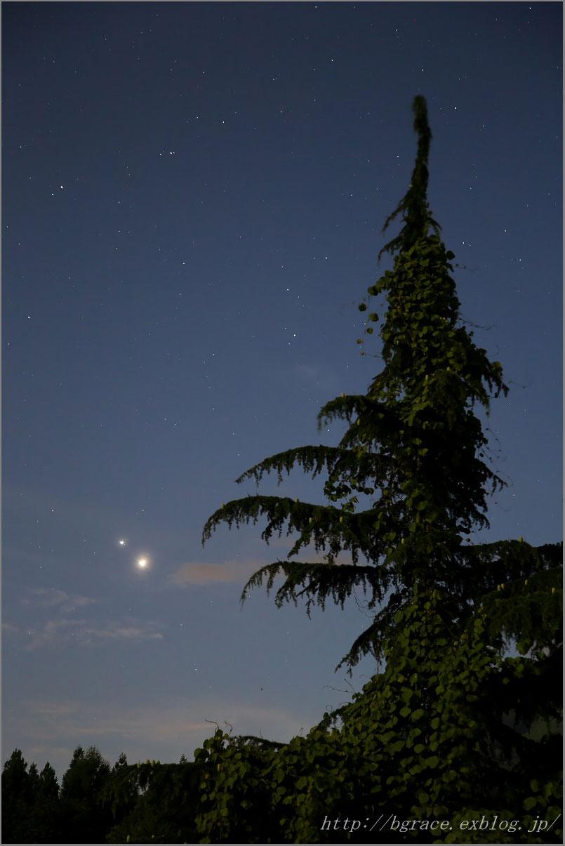 2015年6月29日 金星と木星の接近_b0191074_221965.jpg