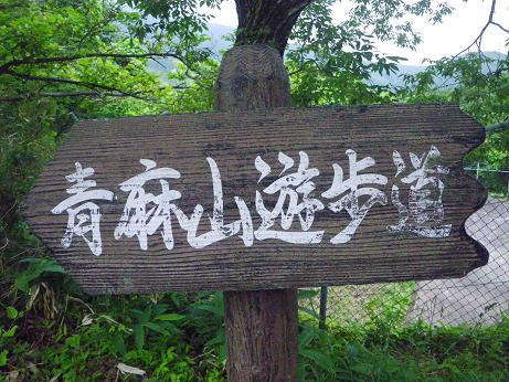 青麻山(28回目) ~ 2015年6月30日_f0170180_22471623.jpg