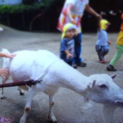 動物村にいってきました!6月最後の給食_c0293682_13194893.jpg