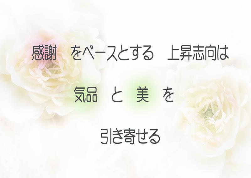 f0215487_10592790.jpg