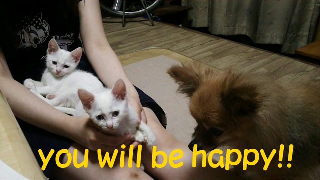 みな&ふみ姉妹 新生活スタート!_f0242002_1515439.jpg