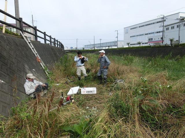 梅雨の晴れ間に小潤井川で草刈り 夜の払いはいつもの「ホルモン忠ちゃん」_f0141310_7273172.jpg