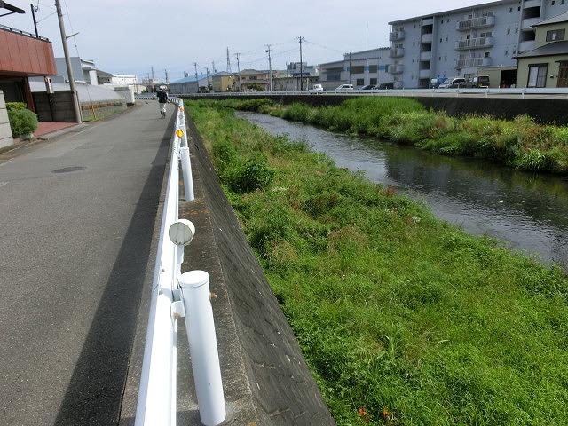 梅雨の晴れ間に小潤井川で草刈り 夜の払いはいつもの「ホルモン忠ちゃん」_f0141310_728064.jpg
