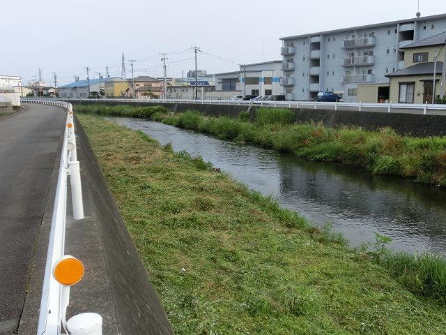 梅雨の晴れ間に小潤井川で草刈り 夜の払いはいつもの「ホルモン忠ちゃん」_f0141310_7281635.jpg