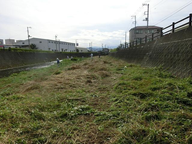 梅雨の晴れ間に小潤井川で草刈り 夜の払いはいつもの「ホルモン忠ちゃん」_f0141310_7283766.jpg