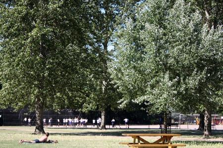 猫とアーチビショップ公園で。_b0199526_19103176.jpg