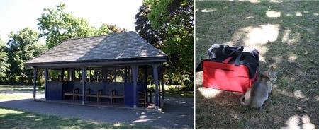 猫とアーチビショップ公園で。_b0199526_19183164.jpg