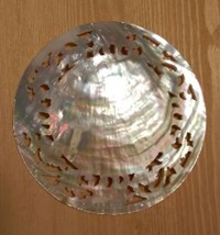シェルのお皿追加_e0044536_13594933.jpg
