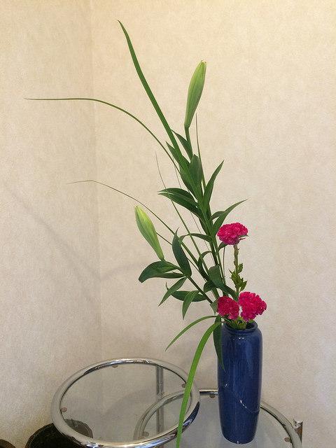 6/30のお花:ユリ、鶏頭、オクラレルカ_b0042538_13290735.jpg